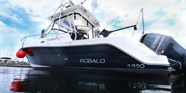 2008 Robalo R305 Express Walk-around